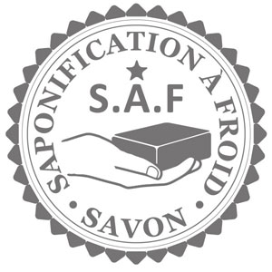 logoSAF21.jpg